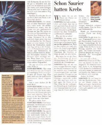 20011125 kleinezeitung schwarzenberg 2