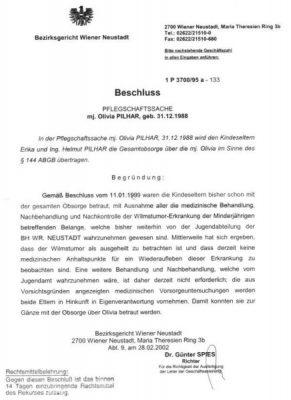 20020228 bg beschluss pflegschaft