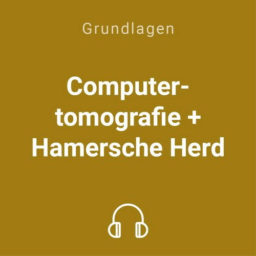 computertomografie hamersche herd mp3