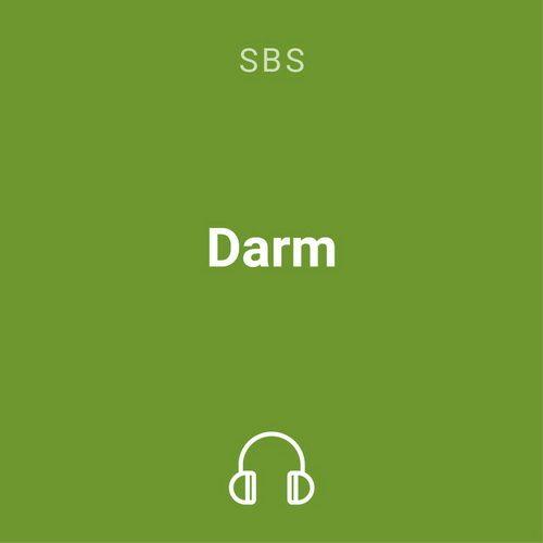 darm mp3