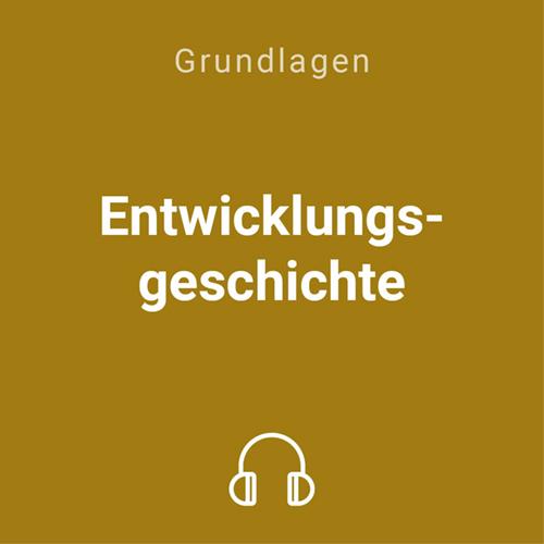 entwicklungsgeschichte mp3