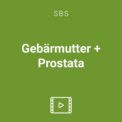 gebaermutter prostata vod