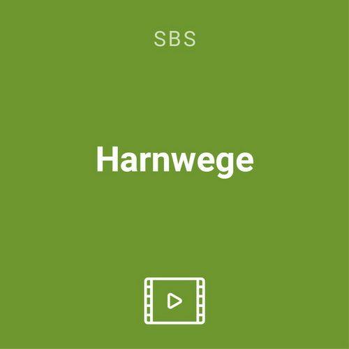 harnwege vod