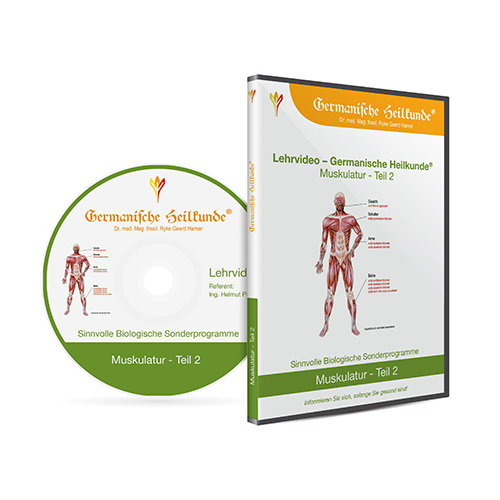 muskulatur 2 2 dvd