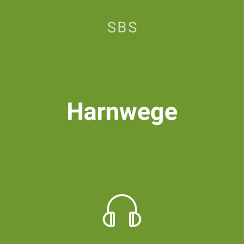 harnwege mp3 1