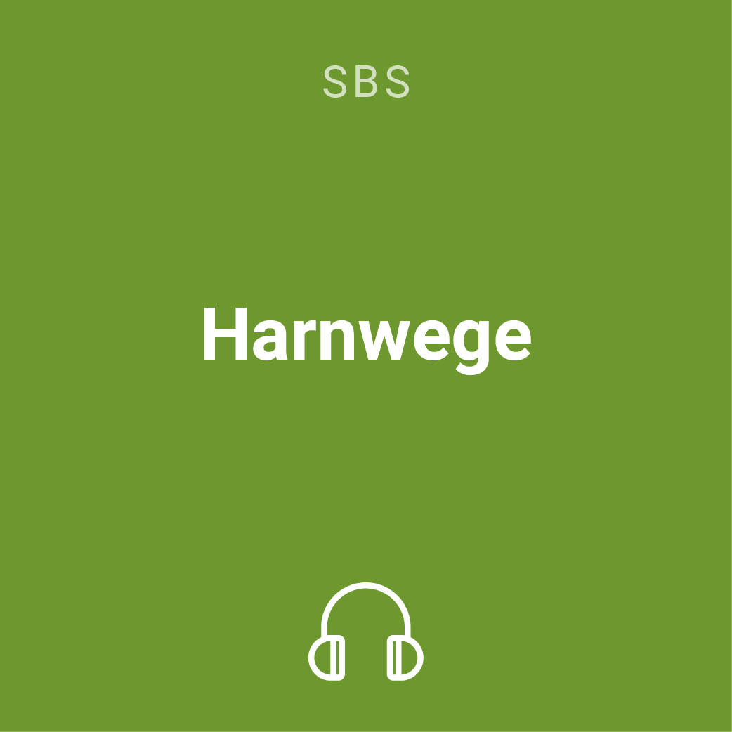 harnwege mp3