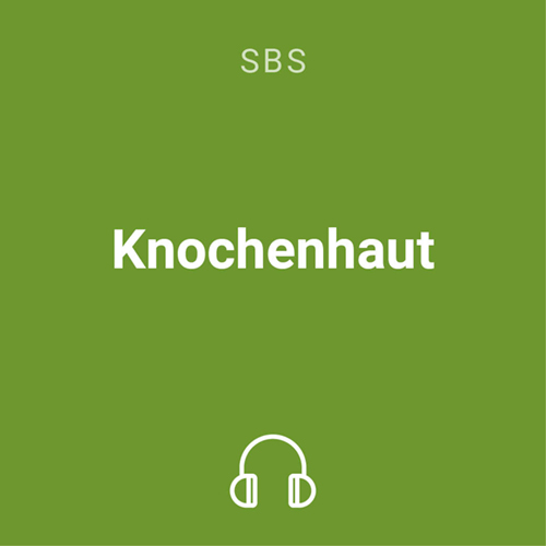 knochenhaut mp3 1