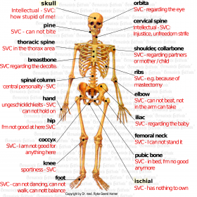 Organ Bone - Symptoms according to Germanische Heilkunde®