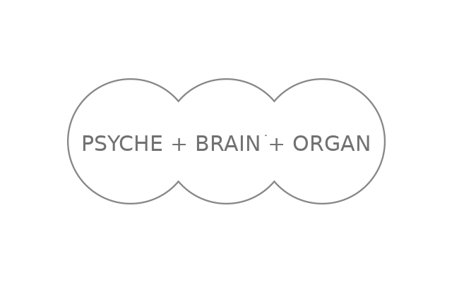 psyche brain organ
