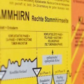 Gullet-Mucousa-Pattern - Diagnostic Chart of Germanische Heilkunde