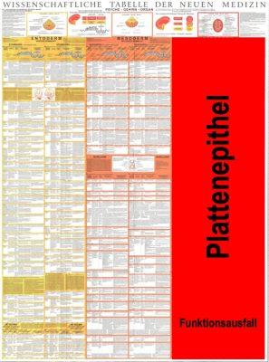 grafik tabelle ektoderm