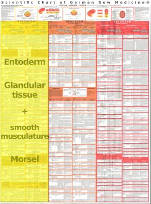 grafik tabelle entoderm 1