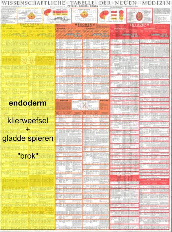 grafik tabelle entoderm nl