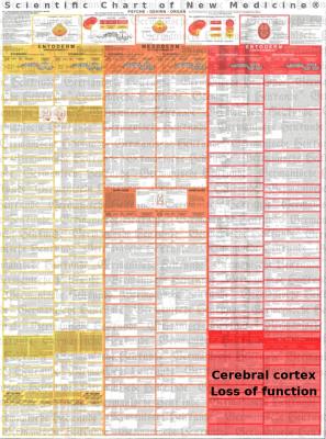 Diagnostic Chart Functional Failure
