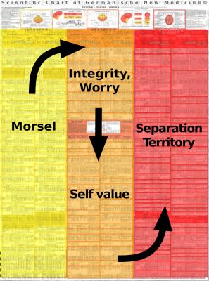 diagnostic chart conflict content