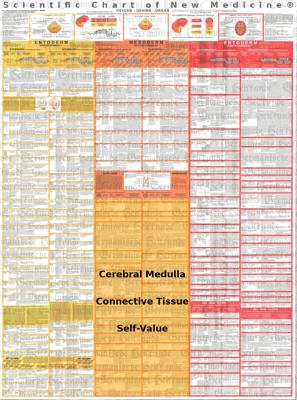 Diagnostic chart cerebral medulla