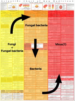Diagnostic Chart Microbes