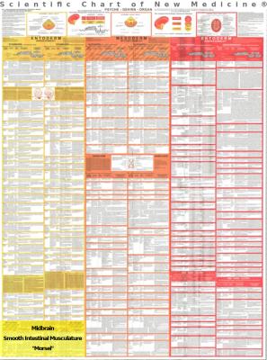 Diagnostic Chart Midbrain