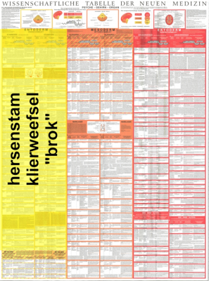 grafik tabelle stammhirn nl