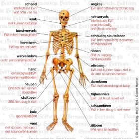 Orgaan bot – symptomen volgens de Germanische Heilkunde