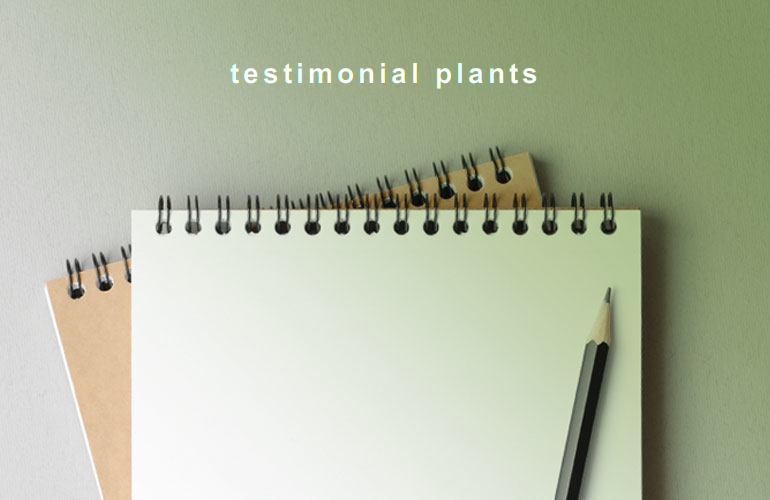 testimonial plants