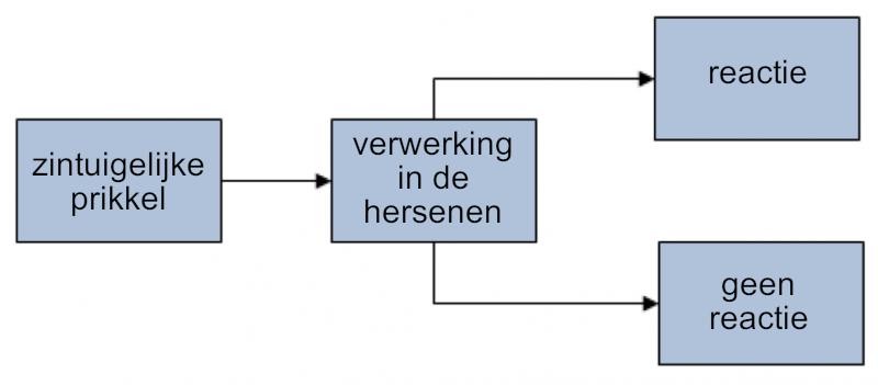 20140611 Volker Siefke prognose over de toekomst van de GHk